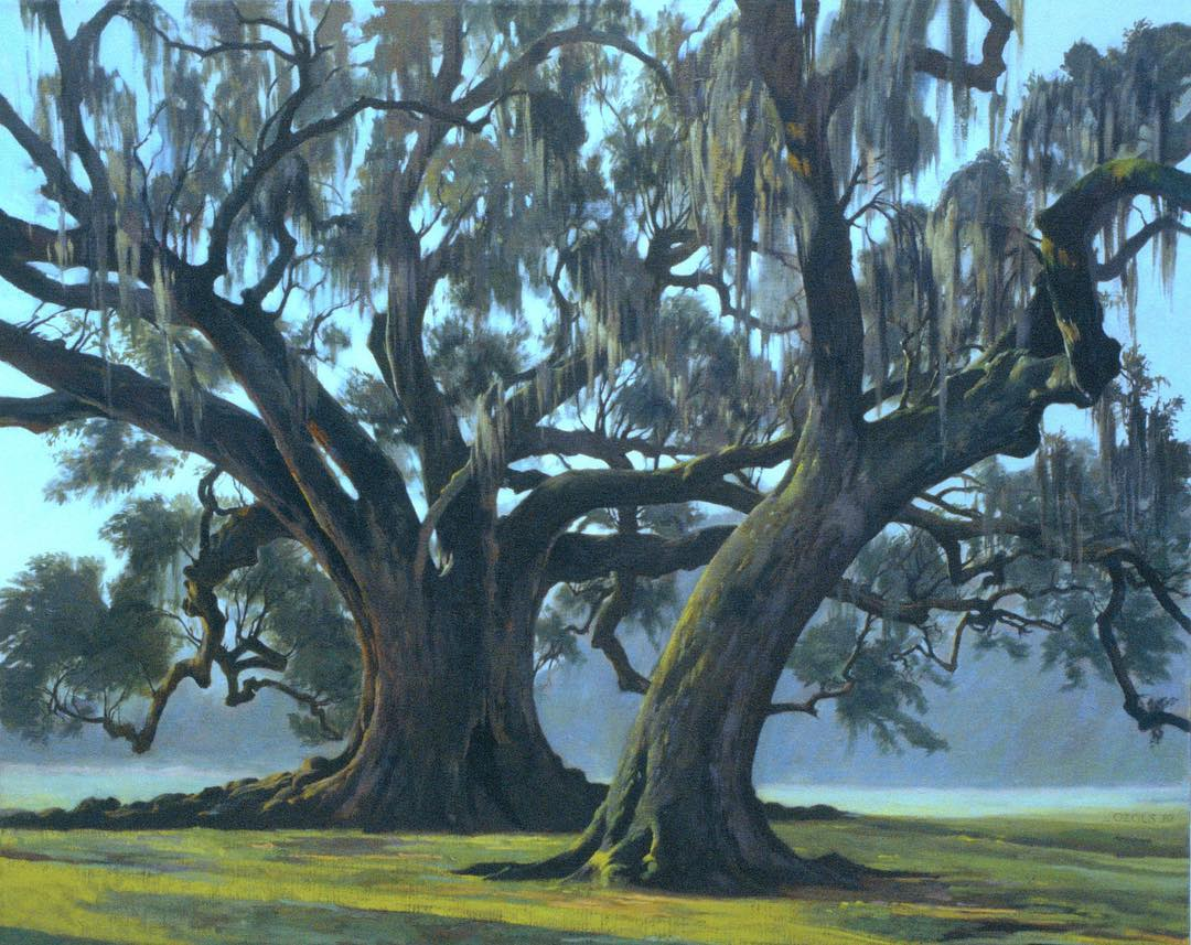Drawing Workshop Announcement: The Anatomy of Trees with Auseklis Ozols, President of the Ozols Collection.  Please join us for a two morning session in New Orleans City Park under the 800 year old oak tree; April 8-9,(Thursday and Friday Morning) 10am-12pm.
